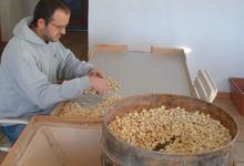 GAEC Sativa, farine de chataigne