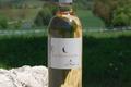 Côtes de Gascogne Blanc Doux- Au Bois de la Lune