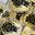 Foie Gras de canard entier mi cuit - poche 200 grammes