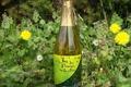 Aval Breiz - Jus de pommes Guillevic pétillant