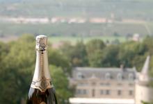 Champagne Prestige - Blancs de Blancs - Magnum