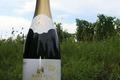 Crémant d'Alsace Brut du Rimlerpfad