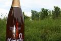 Crémant d'Alsace Rosé - La Nymphe