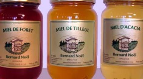 Miel de Tilleul 1000 gr - Colis Familial de 10 pots de 1000 gr