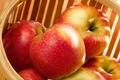 La pomme jubilé