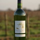 Vin de Pays Charentais Blanc