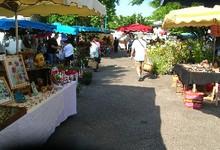 Marché de Montaigu de Quercy