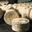 Bleu des Causses (fromage à pâte persillée) AOC - AOP