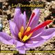 La Paradisière, producteur de Safran français haut de gamme