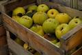 Croustade de coings aux pommes