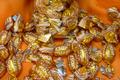 Bonbons noix