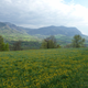 Fromagerie Entre Lac Et Montagne