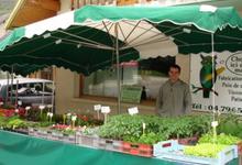 patrick Evrard, horticulture