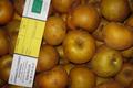 canada grise caisse 10kg / Pommes BIO