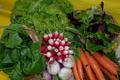 Panier De Legumes De Saison