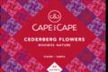 Cederberg Flowers