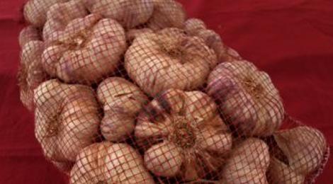 Ail violet filet 5 KG