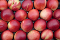 Nectarines blanches plateau 2,5 kg