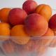 Barquette abricots 1 kg