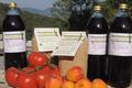Petit Epeautre de Haute Provence