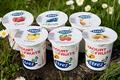 yaourts brassés aux fruits