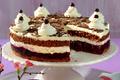 """Gâteau aux myrtilles style """"Forêt-noire"""" avec des myrtilles sauvages du Canada"""