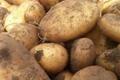 Pomme de terre Bio - 1 kg - variété Eden