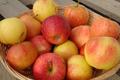 Méli-Mélo de pommes