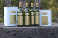 AOC Huile d'Olive de Provence, domaine du Jasson