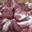 Sauté de porc noir Gascon