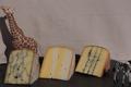 Trio de tommes safari (vache et chèvre)