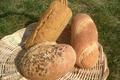 Larrieu Laurent , paysan boulanger bio