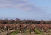 domaine de Candie,  Régie Agricole de la Ville de Toulouse
