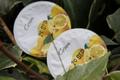 Yaourt citron arôme naturel