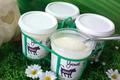 yaourts fermiers aux fruits jaunes Ferme de Champel