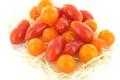 Tomate cerise variée