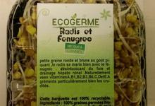 Graine Germées - Fenugrec et radis