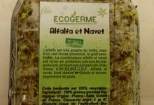 Graine Germées - Alfafa et navet