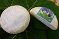le Vanéou : vache croûte fleurie