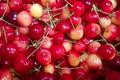 Cerises, variété Rainier