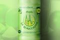 « Limonade - Mojito »