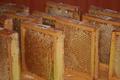 Miellerie du Gâtinais, Pollen frais congelé
