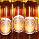 PATXAKA: liqueur de pomme silvestre et anis