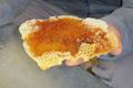FERME PELLOENEA, miel