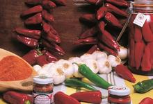 conserverie artisanale BIPIA