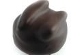 chocolaterie de la Couronne, Carrousel
