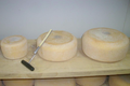 Ferme Peyrecor, fromages de vache