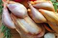 Ferme de la Fayaudrie, poulet bio