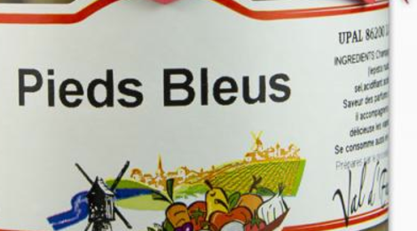 Champignons Pieds Bleus