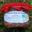 pâté de foie de volaille
